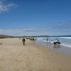 O'Sullivans Beach