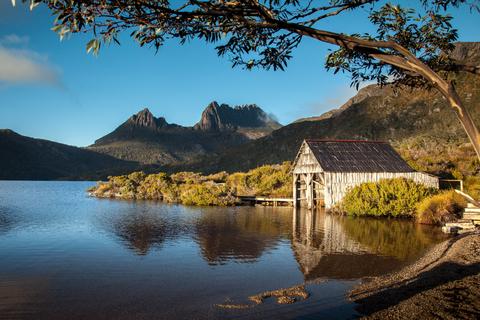 Tasmania National Parks Take Dogs