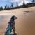 O'Sullivan Beach